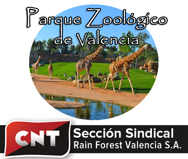 logo_rainforest_Valencia_v2