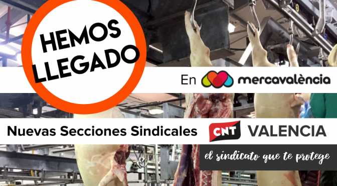 CNT constituye dos nuevas secciones sindicales en Mercavalencia y en la empresa Prointuria
